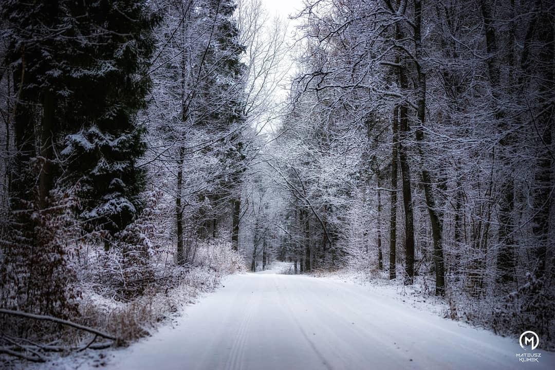 Śnieg gościł u nas zaledwie dwa dni, ale zdążyliśmy uchwycić go z góry, jak i z dołu 😁🌨️🎄🎅 w drodze na Wierzbę 😍 ______