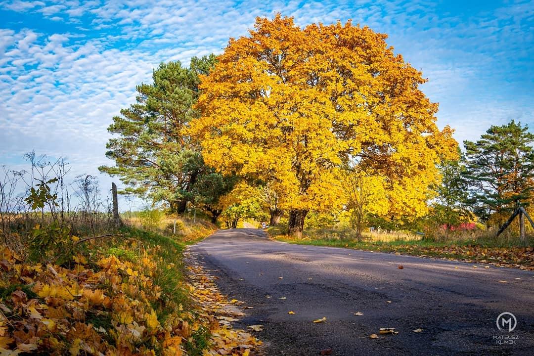 Jesień jest piękna! 😍🌄🌳 ______ #mikolajki #mikołajki #miastomikolajki #beautifulpoland #mazury #perlamazur #polandtravel